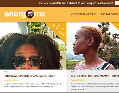 Project: Energems Buzz, 2015 to 2016