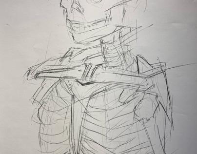 Skeleton rib