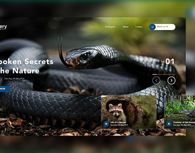 Discovery Channel Landing Design UI Design