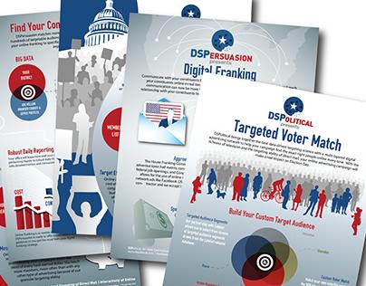 DSPolitical Handouts