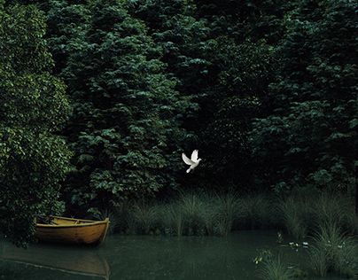 In a Deep forest lake!.................Strange boat