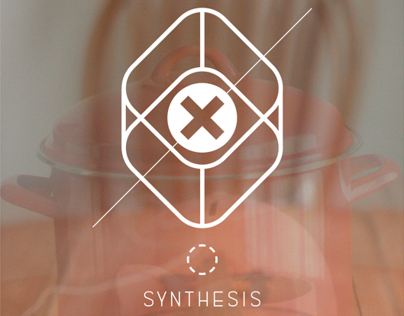 Synthesis: Senior Thesis Project