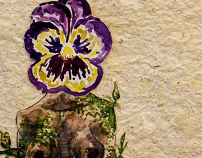 Viola sapiens Project