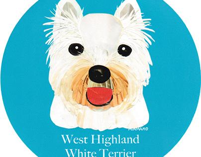 012 | West Highland White Terrier