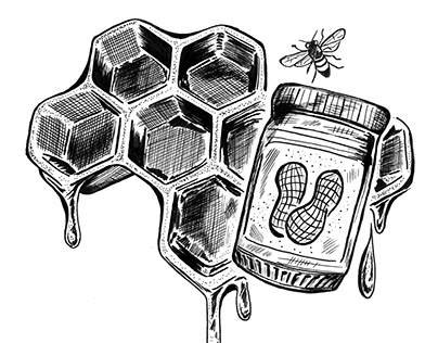 Pen and Ink Illustration - drawing of honeycomb, bees
