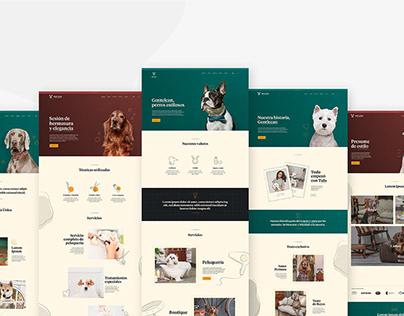 Gentlecan · Web Design