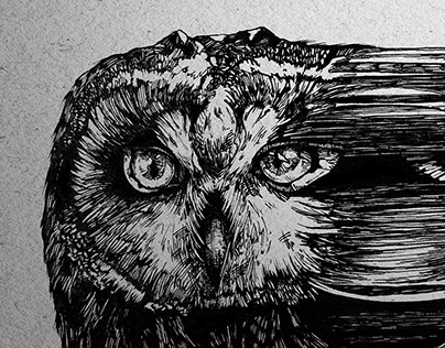 GLITCHED OWL 2