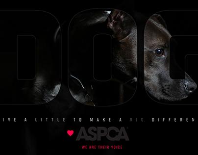 DailyUI #005 ASPCA Ad