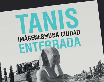 Tanis. Imagenes de una ciudad enterrada