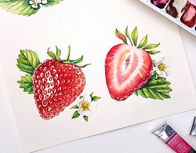 Watercolor fruits and berries 2018