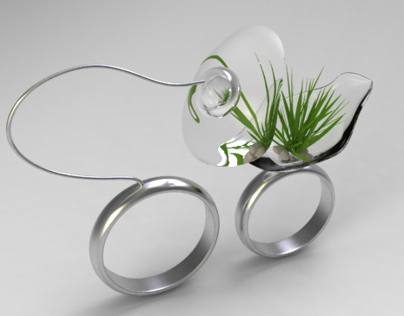 Indoor hydroponics systems wedding rings/2011