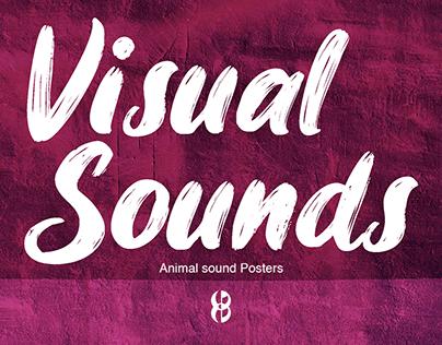 VISUAL SOUNDS