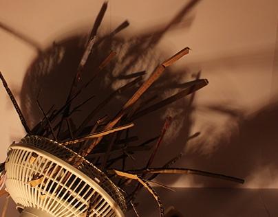 Sickness of the wind (Desenho A)