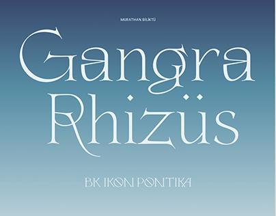 BM Ikon Pontika Typeface - Rigid & Splendor Pontus