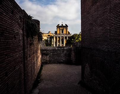 Roma quanta fuit, ipsa ruina docet...