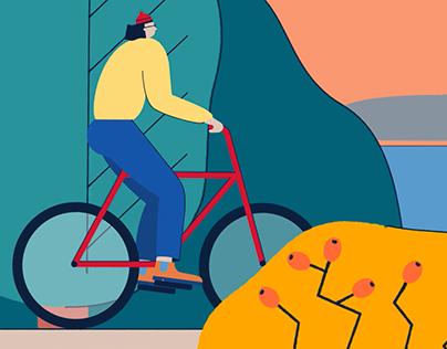 Bike Tour