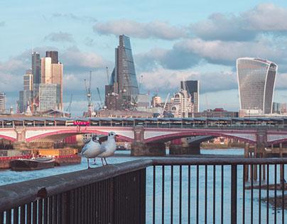 City Life | Photography