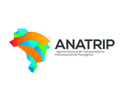 Anatrip | Branding