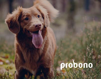 Probono Dog Biscuits Website Design