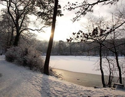 Photography/ Berlin in winter
