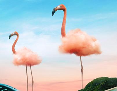 Flamingo Cloud
