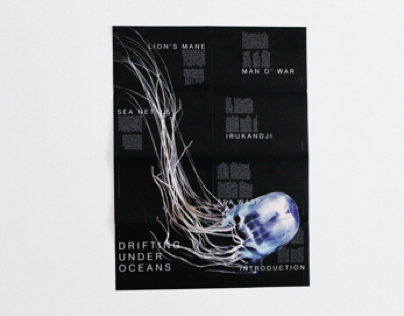 Deadliest Jellyfish Poster Booklet
