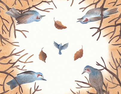 2 Illustrations for scarf design 2018