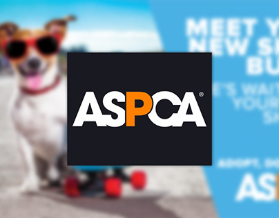 """Meet Your New Buddy"" ASPCA Campaign"
