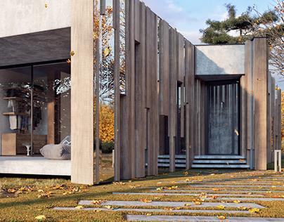 MOPS / Reflective house