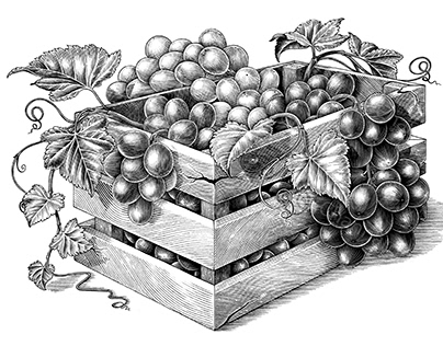 Organic grapes in the basket