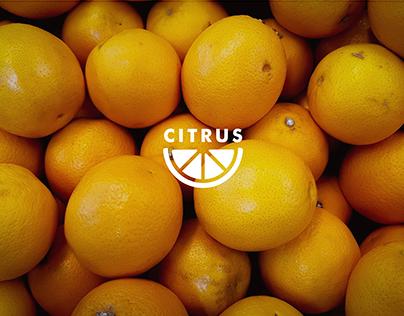 Citrus, Fresh Orange Juice Branding