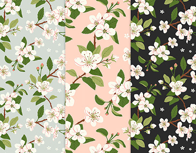 Apple blossoms - pattern