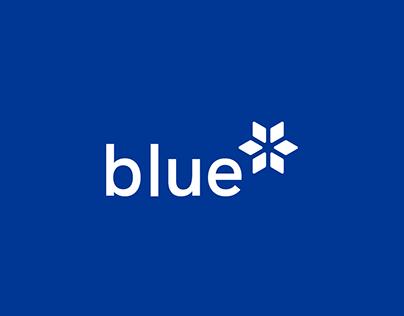 Blue Branding Identity