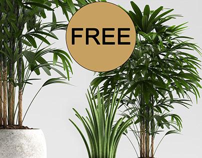 free 3d plant