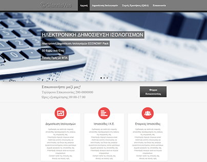 Online Company's Financial Statements Multisite