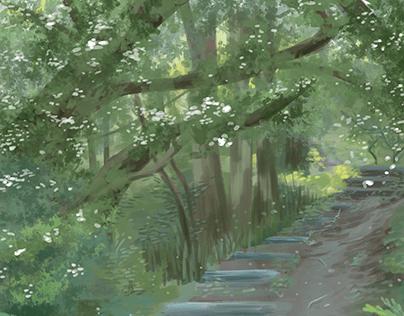 Woodland Walk - Foliage Study