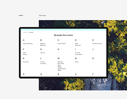 baby Chic Website Concept