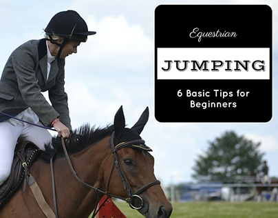 Equestrian Jumping: 6 Basic Tips for Beginners