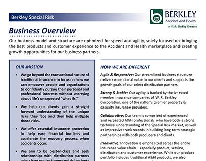 W.R. Berkley Special Risk Flyers (3)