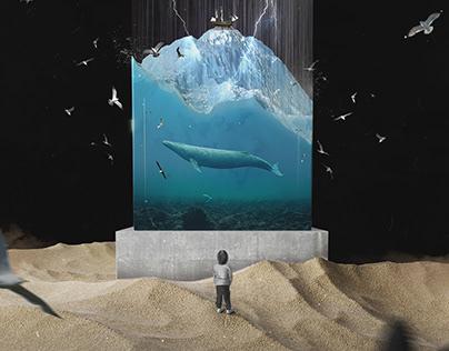 Сова, Сансара — «Жаль», обложка для сингла