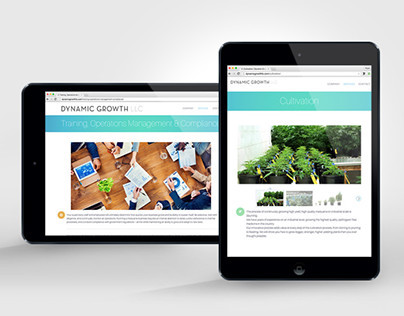 Dynamic Growth LLC Website