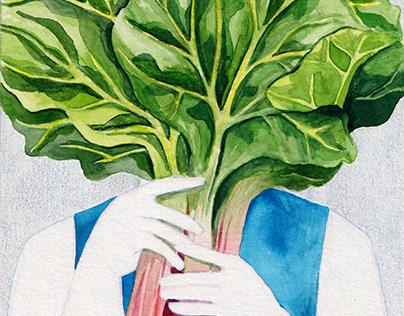Various Food Illustrations