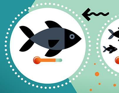 Mercury fishing / Mercury cycle.