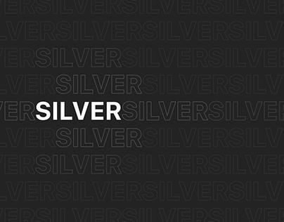 Silver - Real estate landing page