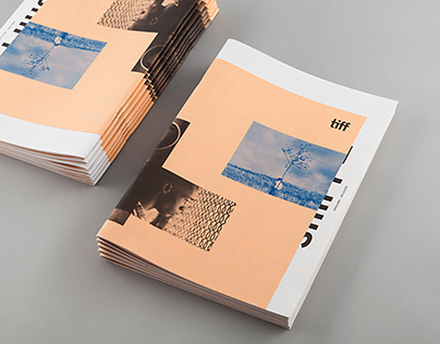 TIFF 2016 Annual Report