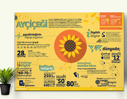 Tarlasera Agriculture Magazine // Infographic Poster