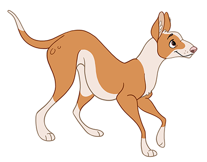 Ibizan Hound — Character Design