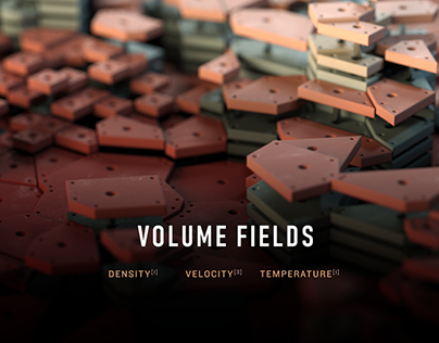 Volume Fields