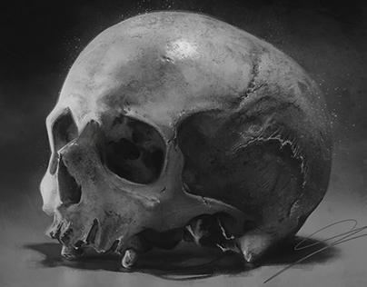 Skull_study