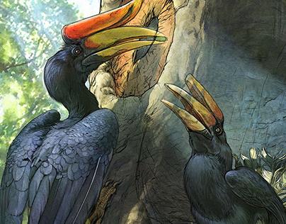 The Minnesota Zoo | Nesting Hornbills